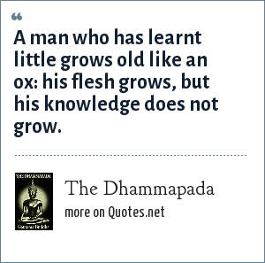 The Dhammapada: A man who has learnt little grows old like an ox: his flesh grows, but his knowledge does not grow.