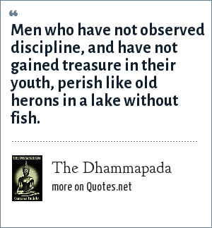 The Dhammapada: Men who have not observed discipline, and have not gained treasure in their youth, perish like old herons in a lake without fish.