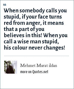 Mehmet Murat ildan: When somebody calls you stupid, if your face turns red from anger, it means that a part of you believes in this! When you call a wise man stupid, his colour never changes!