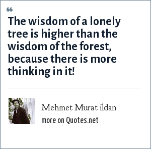 Mehmet Murat ildan: The wisdom of a lonely tree is higher than the wisdom of the forest, because there is more thinking in it!