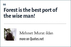 Mehmet Murat ildan: Forest is the best port of the wise man!