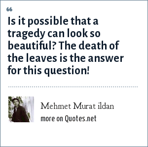 Mehmet Murat ildan: Is it possible that a tragedy can look so beautiful? The death of the leaves is the answer for this question!