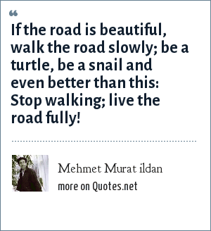 Mehmet Murat ildan: If the road is beautiful, walk the road slowly; be a turtle, be a snail and even better than this: Stop walking; live the road fully!
