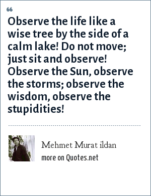 Mehmet Murat ildan: Observe the life like a wise tree by the side of a calm lake! Do not move; just sit and observe! Observe the Sun, observe the storms; observe the wisdom, observe the stupidities!