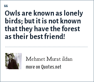 Mehmet Murat ildan: Owls are known as lonely birds; but it is not known that they have the forest as their best friend!