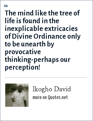 Ikogho David: The mind like the tree of life is found in the inexplicable extricacies of Divine Ordinance only to be unearth by provocative thinking-perhaps our perception!