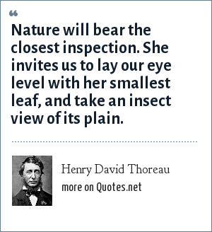 Henry David Thoreau: Nature will bear the closest inspection. She invites us to lay our eye level with her smallest leaf, and take an insect view of its plain.