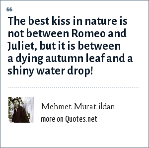 Mehmet Murat ildan: The best kiss in nature is not between Romeo and Juliet, but it is between a dying autumn leaf and a shiny water drop!