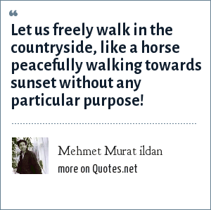 Mehmet Murat ildan: Let us freely walk in the countryside, like a horse peacefully walking towards sunset without any particular purpose!