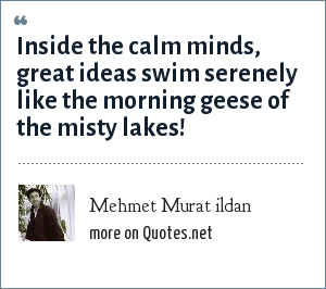 Mehmet Murat ildan: Inside the calm minds, great ideas swim serenely like the morning geese of the misty lakes!