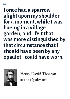 Henry David Thoreau: I once had a sparrow alight upon my shoulder for a moment, while I was hoeing in a village garden, and I felt that I was more distinguished by that circumstance that I should have been by any epaulet I could have worn.