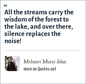 Mehmet Murat ildan: All the streams carry the wisdom of the forest to the lake, and over there, silence replaces the noise!