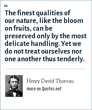 Henry David Thoreau: The finest qualities of our nature, like the bloom on fruits, can be preserved only by the most delicate handling. Yet we do not treat ourselves nor one another thus tenderly.