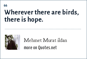 Mehmet Murat ildan: Wherever there are birds, there is hope.