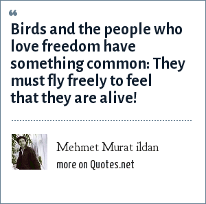 Mehmet Murat ildan: Birds and the people who love freedom have something common: They must fly freely to feel that they are alive!