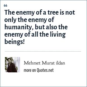 Mehmet Murat ildan: The enemy of a tree is not only the enemy of humanity, but also the enemy of all the living beings!