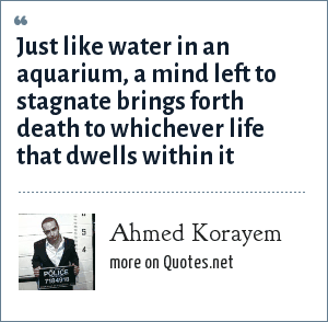 Ahmed Korayem: Just like water in an aquarium, a mind left to stagnate brings forth death to whichever life that dwells within it