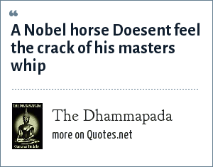 The Dhammapada: A Nobel horse Doesent feel the crack of his masters whip