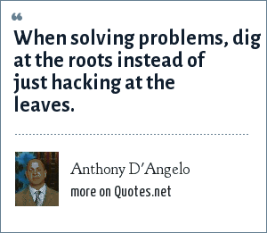 Anthony D'Angelo: When solving problems, dig at the roots instead of just hacking at the leaves.