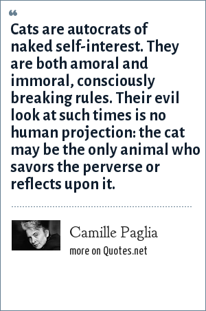 Camille Paglia: Cats are autocrats of naked self-interest. They are both amoral and immoral, consciously breaking rules. Their evil look at such times is no human projection: the cat may be the only animal who savors the perverse or reflects upon it.
