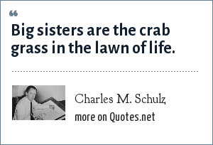 Charles M. Schulz: Big sisters are the crab grass in the lawn of life.