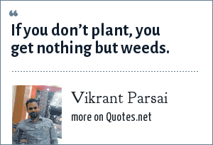 Vikrant Parsai: If you don't plant, you get nothing but weeds.
