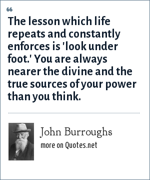 John Burroughs: The lesson which life repeats and constantly enforces is 'look under foot.' You are always nearer the divine and the true sources of your power than you think.