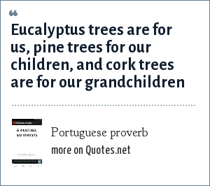 Portuguese proverb: Eucalyptus trees are for us, pine trees for our children, and cork trees are for our grandchildren