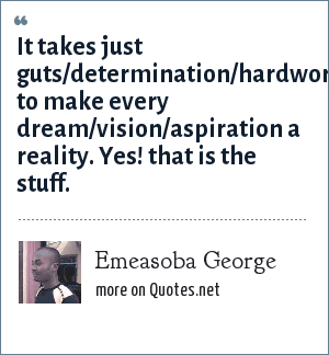 Emeasoba George: It takes just guts/determination/hardwork to make every dream/vision/aspiration a reality. Yes! that is the stuff.