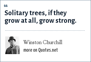 Winston Churchill: Solitary trees, if they grow at all, grow strong.