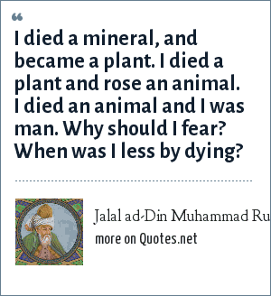 Jalal ad-Din Muhammad Rumi: I died a mineral, and became a plant. I died a plant and rose an animal. I died an animal and I was man. Why should I fear? When was I less by dying?