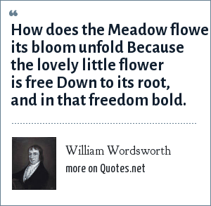 William Wordsworth: How does the Meadow flower its bloom unfold Because the lovely little flower is free Down to its root, and in that freedom bold.