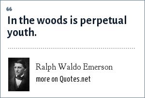 Ralph Waldo Emerson: In the woods is perpetual youth.