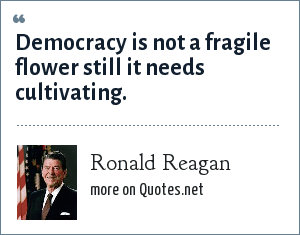 Ronald Reagan: Democracy is not a fragile flower still it needs cultivating.