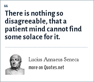Lucius Annaeus Seneca: There is nothing so disagreeable, that a patient mind cannot find some solace for it.