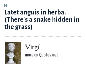 Virgil: Latet anguis in herba. (There's a snake hidden in the grass)