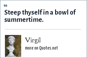 Virgil: This quote reminds me to enjoy each moment of the summer Steep thyself in a bowl of summertime.