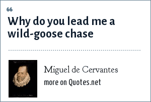 Miguel de Cervantes: Why do you lead me a wild-goose chase